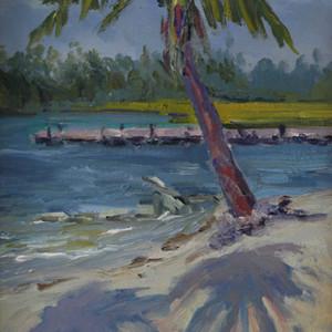 Palm Shadows (Florida)